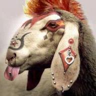 La chèvre Folle